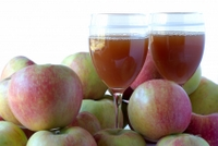 apple cider vinegar cures